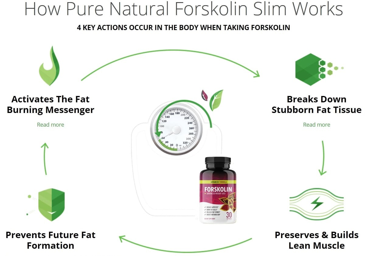 Does forskolin extract work
